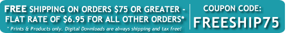 Free or Flat Rate shipping! Coupon Code: FREESHIP75 Click for more info...